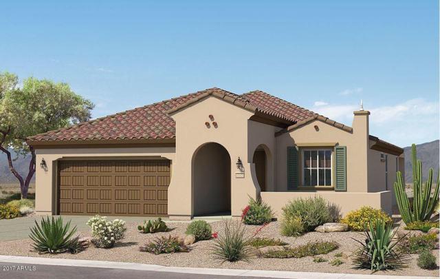 27493 W Irma Lane, Buckeye, AZ 85396 (MLS #5687746) :: Desert Home Premier