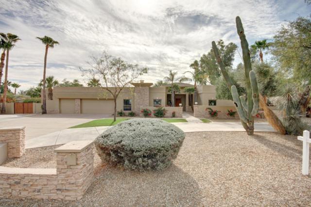 9911 E Jenan Drive, Scottsdale, AZ 85260 (MLS #5687755) :: My Home Group