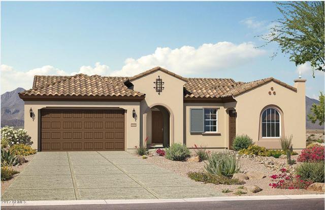 26657 W Quail Avenue, Buckeye, AZ 85396 (MLS #5687773) :: Desert Home Premier