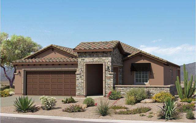 21646 N 265TH Lane, Buckeye, AZ 85396 (MLS #5687789) :: Desert Home Premier