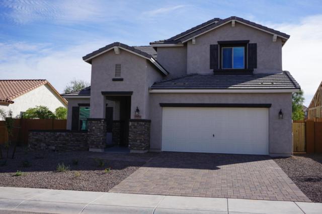 20219 N 260TH Drive, Buckeye, AZ 85396 (MLS #5687808) :: Occasio Realty