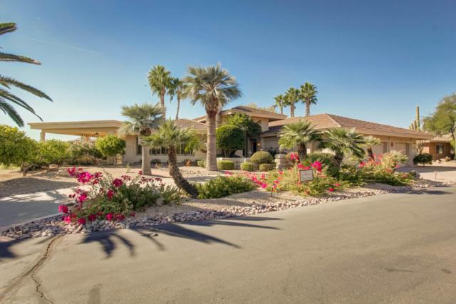 18702 E Buckskin Drive, Rio Verde, AZ 85263 (MLS #5687893) :: Desert Home Premier