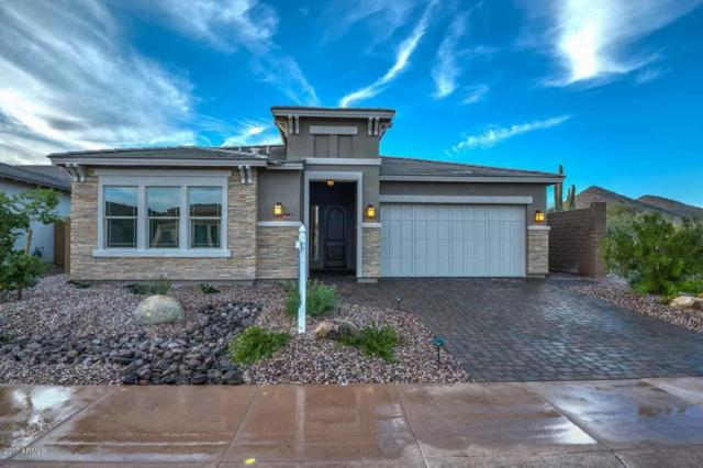 31234 N 124TH Drive, Peoria, AZ 85383 (MLS #5688167) :: The Worth Group