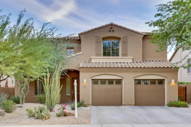 8447 W Tether Trail, Peoria, AZ 85383 (MLS #5688183) :: The Laughton Team