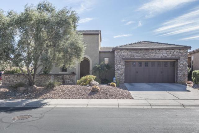 12631 W Bajada Road, Peoria, AZ 85383 (MLS #5688339) :: The Laughton Team