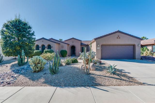 16525 W Flora Lane, Surprise, AZ 85387 (MLS #5688481) :: Desert Home Premier
