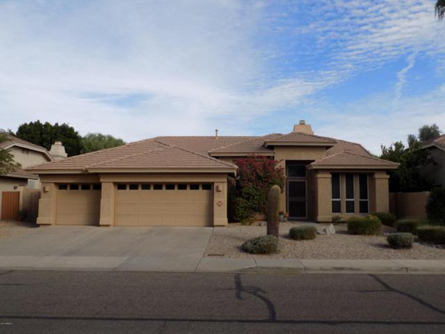 22015 N 65TH Avenue, Glendale, AZ 85310 (MLS #5688486) :: The Laughton Team