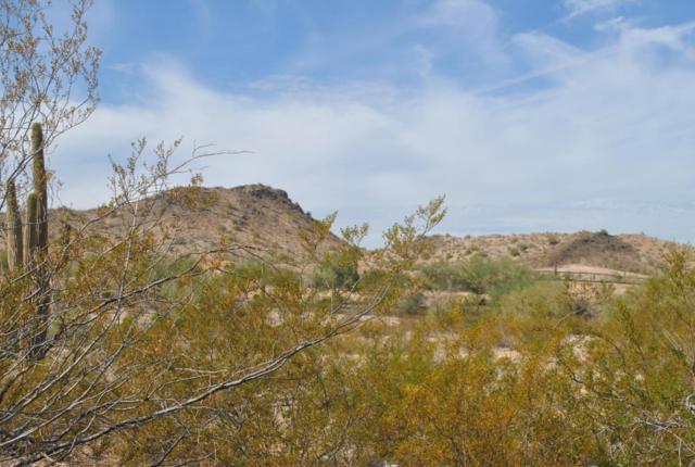 8564 S San Filipe Drive, Goodyear, AZ 85338 (MLS #5688496) :: Power Realty Group Model Home Center