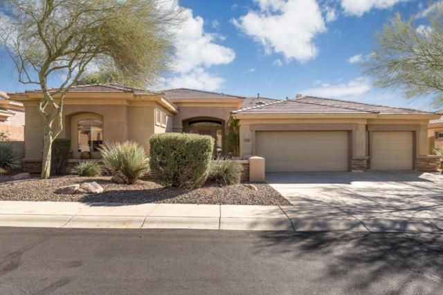 2249 W Hazelhurst Drive, Anthem, AZ 85086 (MLS #5688510) :: The Daniel Montez Real Estate Group