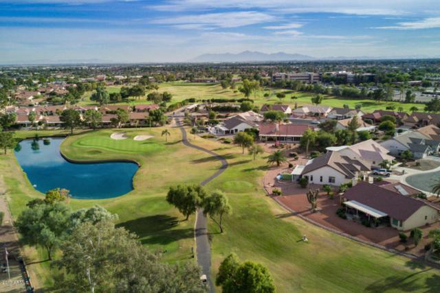 14419 W Ravenswood Drive, Sun City West, AZ 85375 (MLS #5688536) :: The Daniel Montez Real Estate Group