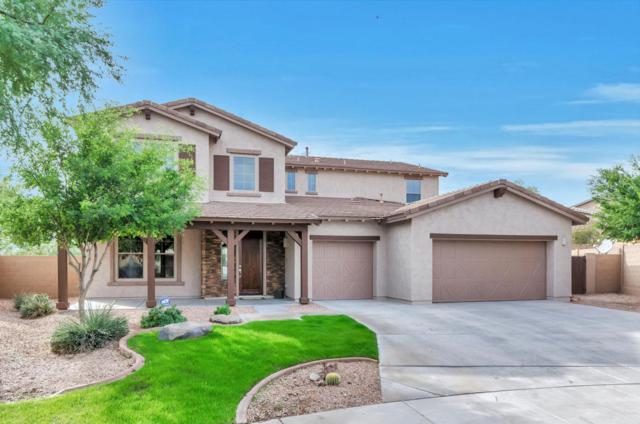 13419 W Tyler Trail, Peoria, AZ 85383 (MLS #5688563) :: Kortright Group - West USA Realty