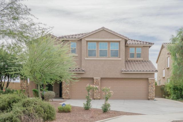 17919 W Diana Avenue, Waddell, AZ 85355 (MLS #5688710) :: The AZ Performance Realty Team