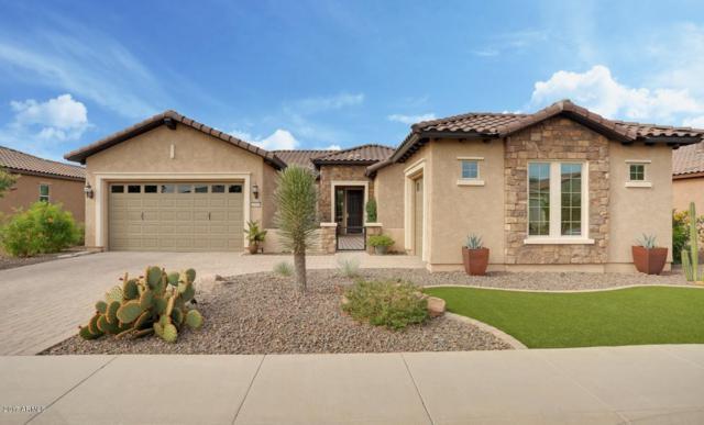 20458 N 272ND Avenue, Buckeye, AZ 85396 (MLS #5688722) :: Desert Home Premier