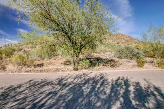 36540 N Conestoga Trail, Cave Creek, AZ 85331 (MLS #5688833) :: Lifestyle Partners Team