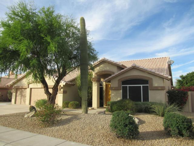 13376 W Alvarado Drive, Goodyear, AZ 85395 (MLS #5688856) :: The Daniel Montez Real Estate Group