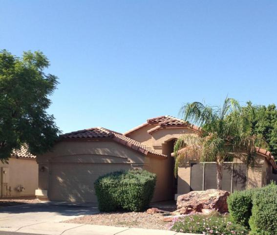 2622 N 109TH Avenue, Avondale, AZ 85392 (MLS #5688911) :: The Daniel Montez Real Estate Group