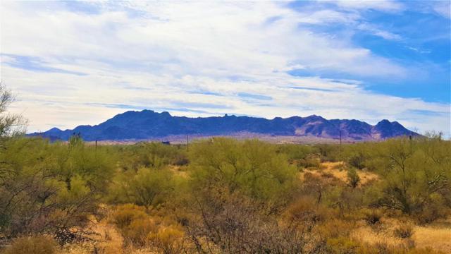 13727 E Brookhart Way, Scottsdale, AZ 85262 (MLS #5688912) :: Desert Home Premier