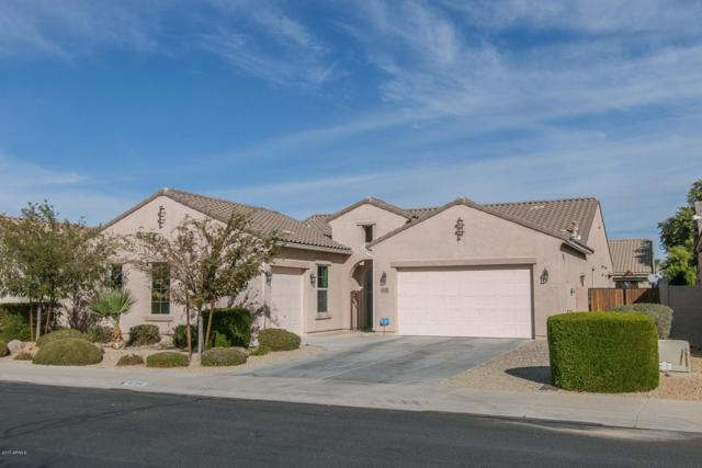 16190 W Coronado Road, Goodyear, AZ 85395 (MLS #5688925) :: The Daniel Montez Real Estate Group