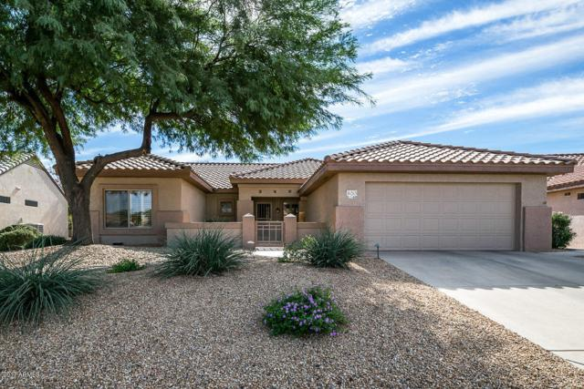 16263 W Tamarack Lane, Surprise, AZ 85374 (MLS #5688927) :: The Daniel Montez Real Estate Group