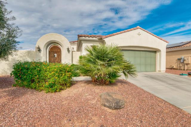 13830 W Nogales Drive, Sun City West, AZ 85375 (MLS #5688943) :: Desert Home Premier