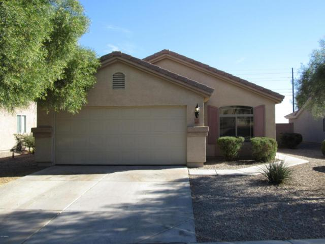 4437 N 123RD Drive, Avondale, AZ 85392 (MLS #5688952) :: The Daniel Montez Real Estate Group