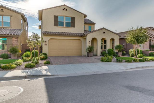26114 N 121ST Avenue, Peoria, AZ 85383 (MLS #5688981) :: The Worth Group