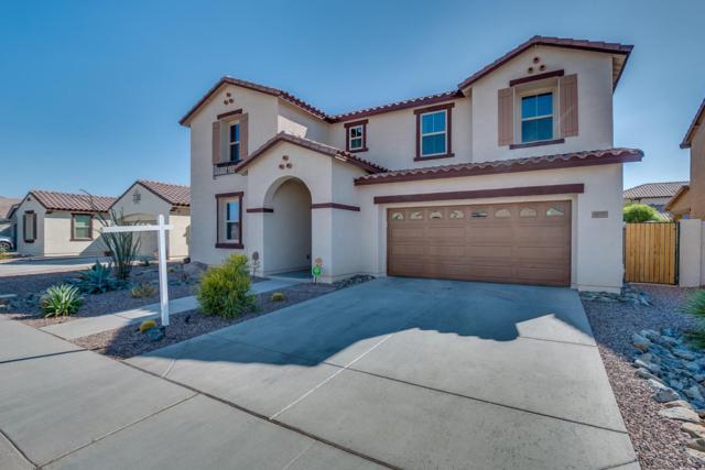 2825 E Quenton Street, Mesa, AZ 85213 (MLS #5689003) :: Santizo Realty Group