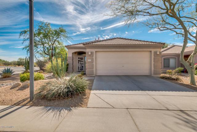 5053 E Roberta Drive, Cave Creek, AZ 85331 (MLS #5689064) :: Lifestyle Partners Team