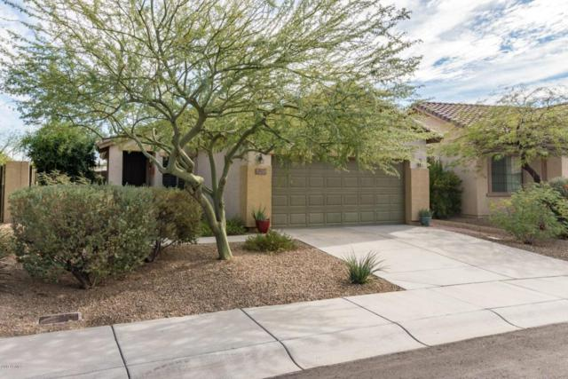 2527 W Bisbee Way, Phoenix, AZ 85086 (MLS #5689075) :: Jablonski Real Estate Group
