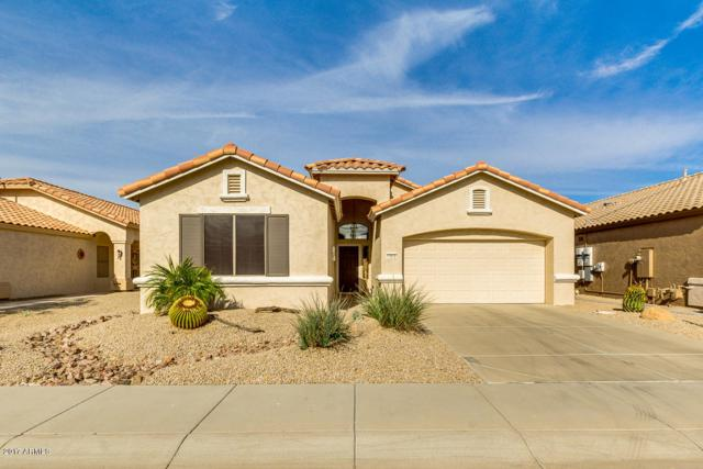 17612 W Ingleside Drive, Surprise, AZ 85374 (MLS #5689078) :: The Daniel Montez Real Estate Group