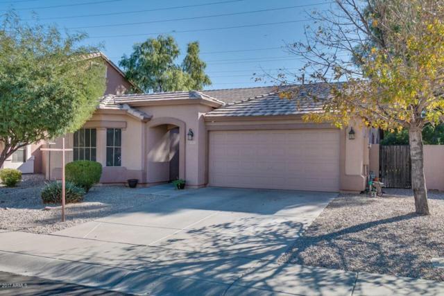 1845 E Aloe Place, Chandler, AZ 85286 (MLS #5689094) :: The Daniel Montez Real Estate Group