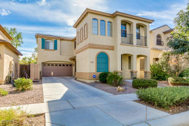 3705 E Stampede Drive, Gilbert, AZ 85297 (MLS #5689095) :: Occasio Realty