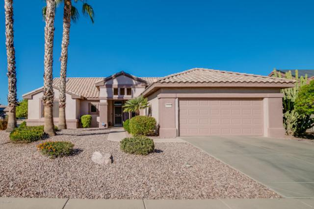15590 W Las Verdes Way, Surprise, AZ 85374 (MLS #5689107) :: The Daniel Montez Real Estate Group