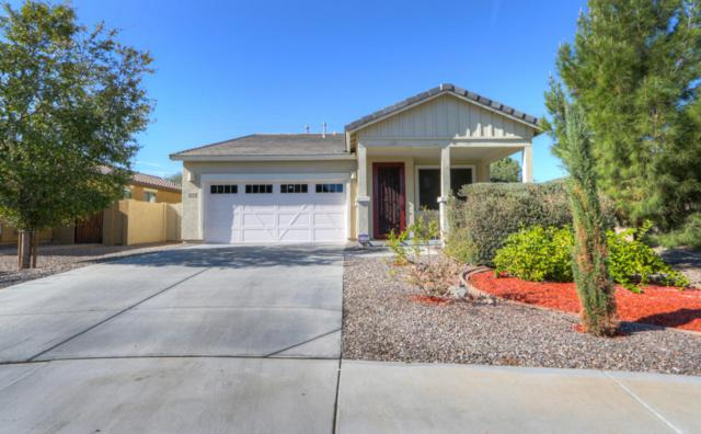 4544 S Twinleaf Drive, Gilbert, AZ 85297 (MLS #5689109) :: Occasio Realty