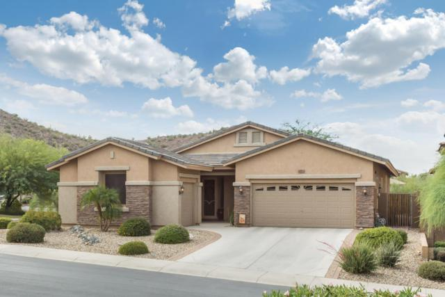 29010 N 69TH Drive, Peoria, AZ 85383 (MLS #5689118) :: The Worth Group