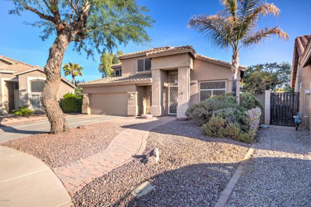 893 N Benson Lane, Chandler, AZ 85224 (MLS #5689175) :: The Daniel Montez Real Estate Group