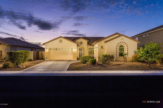 5060 S Amethyst Place, Chandler, AZ 85249 (MLS #5689224) :: The Daniel Montez Real Estate Group