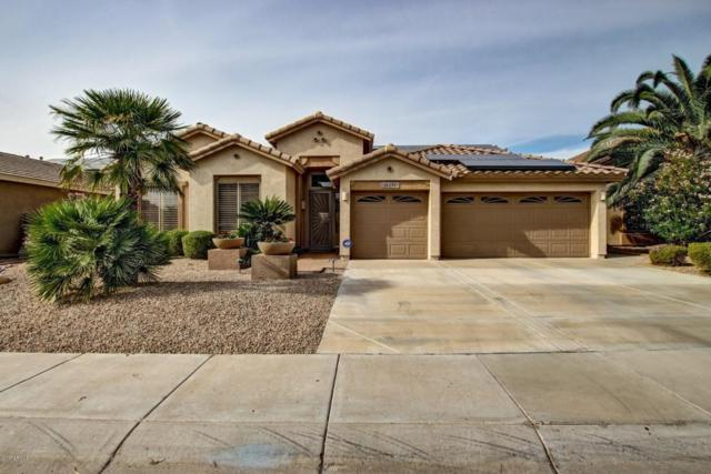 26250 N 69TH Lane, Peoria, AZ 85383 (MLS #5689253) :: Santizo Realty Group