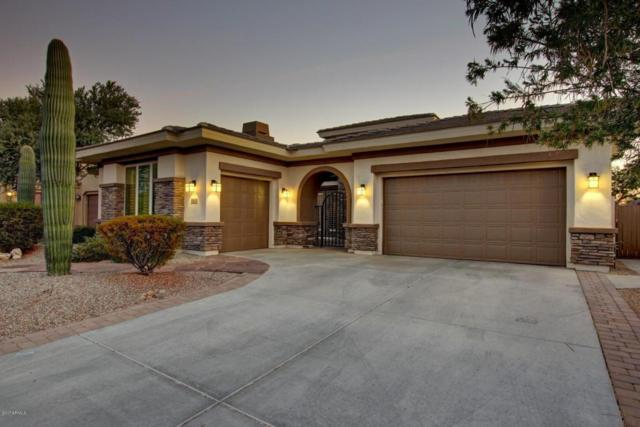 18083 W Narramore Road, Goodyear, AZ 85338 (MLS #5689267) :: The Daniel Montez Real Estate Group