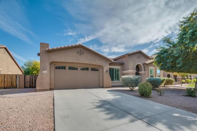 6653 S Balboa Drive, Gilbert, AZ 85298 (MLS #5689286) :: The Daniel Montez Real Estate Group