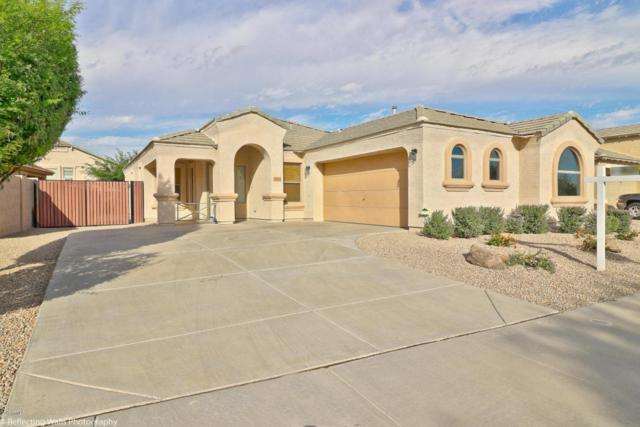 17522 W Eugene Terrace, Surprise, AZ 85388 (MLS #5689319) :: The Daniel Montez Real Estate Group