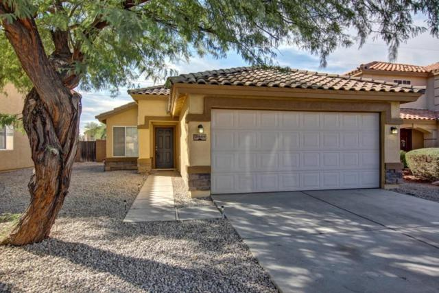 31684 N Cheyenne Drive, San Tan Valley, AZ 85143 (MLS #5689366) :: The Pete Dijkstra Team