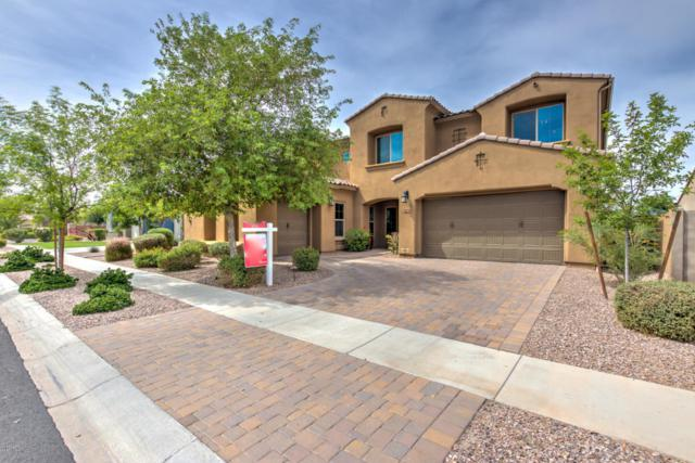 2906 E Blue Sage Road, Gilbert, AZ 85297 (MLS #5689410) :: Santizo Realty Group