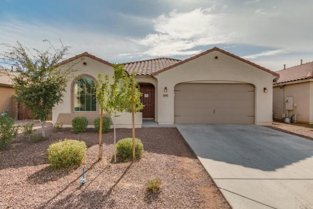 18661 W Fulton Street, Goodyear, AZ 85338 (MLS #5689475) :: Kortright Group - West USA Realty