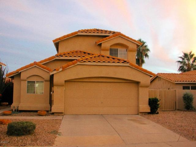 1659 W Maplewood Street, Chandler, AZ 85286 (MLS #5689477) :: Sibbach Team - Realty One Group