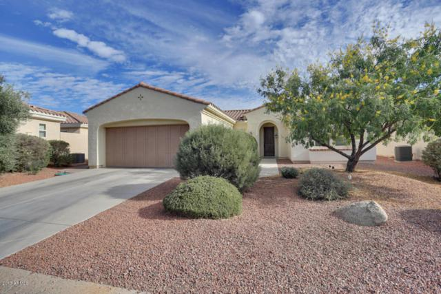 23219 N Hank Raymond Drive, Sun City West, AZ 85375 (MLS #5689484) :: Desert Home Premier