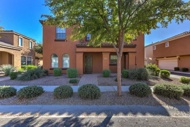 2999 E Harrison Street, Gilbert, AZ 85295 (MLS #5689494) :: Santizo Realty Group