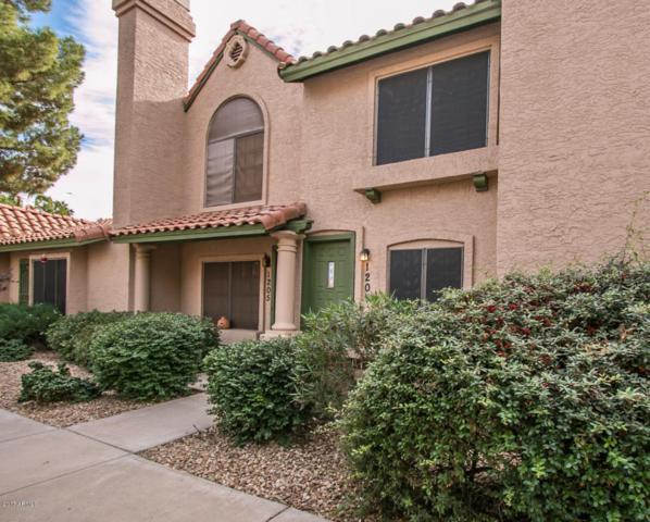 4901 E Kelton Lane #1204, Scottsdale, AZ 85254 (MLS #5689505) :: Sibbach Team - Realty One Group