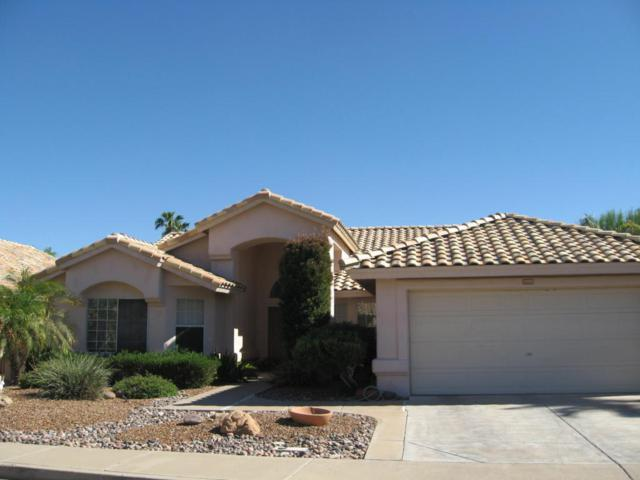 14353 W Shawnee Trail, Surprise, AZ 85374 (MLS #5689515) :: The Worth Group