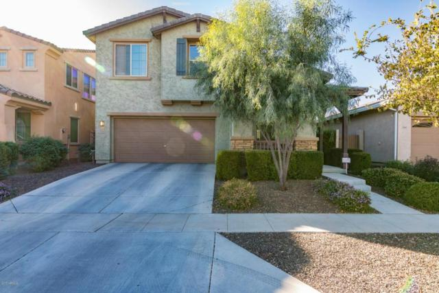 13656 N 149TH Drive, Surprise, AZ 85379 (MLS #5689523) :: The Worth Group